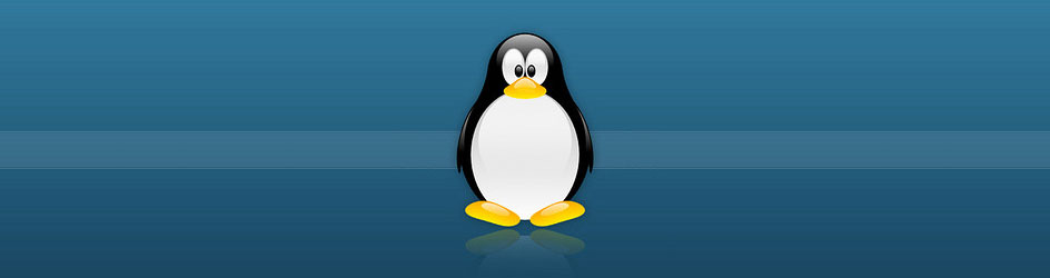 Linux-Support-MIPI-Camera